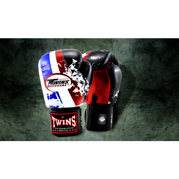 Boxing Gloves Twins Flag of Thailand