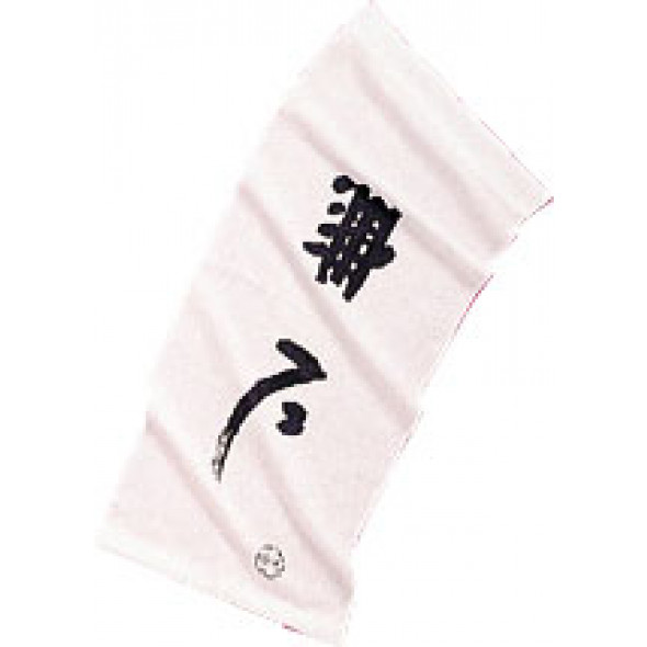 Tenugi - scarf for Kendo