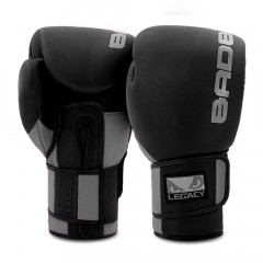 Boxing Gloves Bad Boy Training Series 2.0