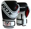 Sac de Frappe enfant RDX Sports Plein + Gants de boxe junior